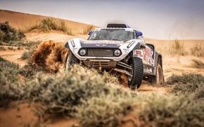 Picture Sand, Auto, Mini, Sport, Desert, Machine, Car, 307, Rally, Rally, Buggy, Buggy, X-Raid Team, MINI ...