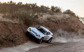 Picture vegetation, 911, Porsche, roadside, 964, 2019, 911 Baja Prototype, Russell Built Fabrication