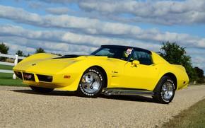 Picture Corvette, Chevrolet, Clouds, Sky, Yellow, 427, Stingray