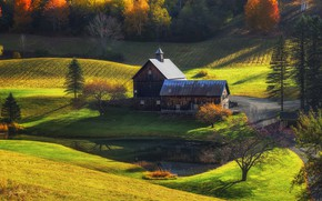 Picture nature, meadow, house