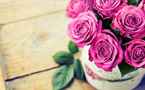 Picture background, roses, bouquet, pink