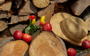 Picture flowers, mood, apples, hat, yellow, tulips, red, wood, fruit