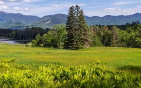 Picture greens, field, forest, summer, clouds, landscape, mountains, river, glade, vegetation, tops, ate, meadow, panorama, Asia, …