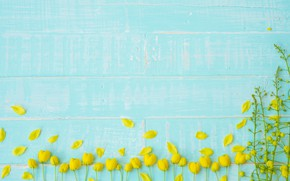 Picture flowers, flowers, petals, background, yellow, blue, tree, Board, petals, wood, blue, yellow