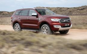 Picture Ford, primer, Everest, 4WD, 2015, Titanium