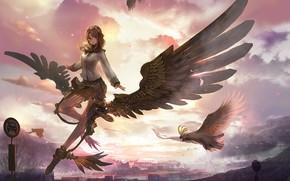 Picture girl, sunset, bird, angel, anime, art
