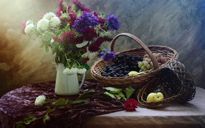 Picture flowers, table, bouquet, grapes, still life, basket, items, composition, asters