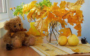 Picture toy, leaves, still life, pear, photo, bear