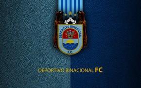 Picture wallpaper, sport, logo, football, Binational