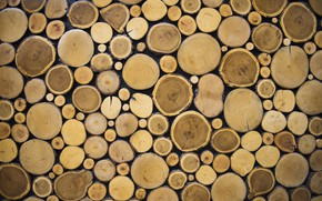 Picture wall, wood, texture, pattern