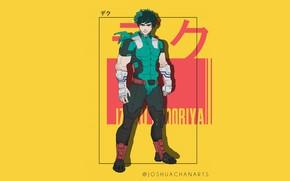 Picture art, male, My Hero Academia, Boku No Hero Academy, Midori Isuku, My Hero Academy