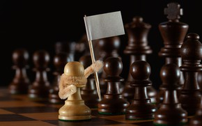 Picture chess, pawns, white flag, surrender, the white pawn, Stems!