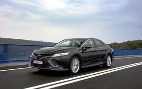 Picture bridge, movement, markup, Toyota, sedan, Hybrid, Camry, 2019
