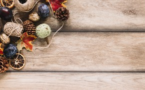 Picture autumn, leaves, leaves, tree, wood, background, plum, autumn, maple, background, bumps, fruits, autumn, nuts, fruit, …