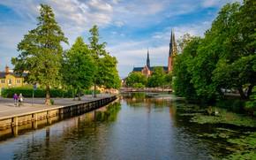 Picture trees, Sweden, promenade, Uppsala