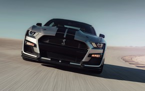Picture track, Mustang, Ford, Shelby, GT500, 2019, gray-silver