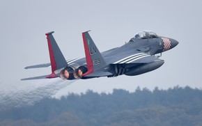 Picture UNITED STATES AIR FORCE, fighter-bomber, American double, strike eagle, McDonnell Douglas F-15E Strike Eagle