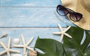 Picture sea, leaves, background, hat, glasses, shell, starfish