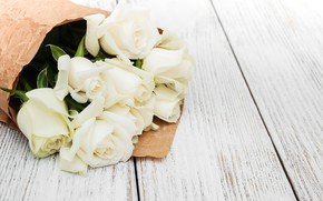 Picture roses, bouquet, white, packaging, Olena Rudo