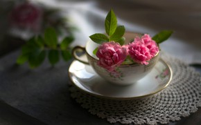 Picture leaves, light, flowers, the dark background, table, background, roses, blur, mug, Cup, dishes, pink, still …