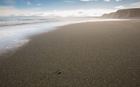 Picture sea, shore, Orepuki Beach