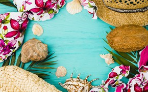 Picture beach, summer, stay, coconut, hat, shell, summer, beach, vacation, coconut, vacation