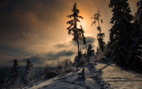 Picture winter, the sky, nature
