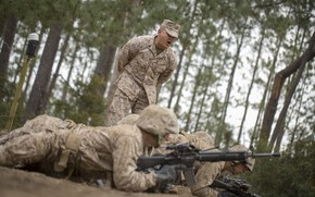 Picture military, training, firearms, armed forces, shouting, orders