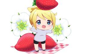 Picture minimalism, baby, strawberry