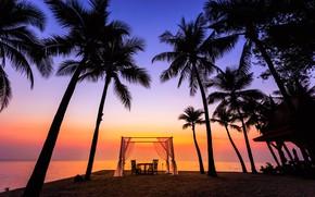 Picture sand, sea, wave, beach, summer, sunset, palm trees, shore, silhouette, summer, beach, sea, sunset, seascape, …