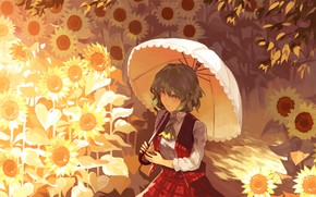 Picture sunflowers, umbrella, green hair, Touhou Project, in the box, Project East, Kazami Yuuka, light and …