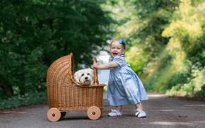 Picture road, joy, mood, dog, dress, girl, stroller, walk, face, baby, doggie