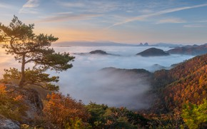 Picture autumn, clouds, landscape, mountains, nature, tree, dawn, morning, forest, pine, shrubs