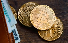 Picture table, gold, bills, table, wallet, bitcoin, bitcoin, btc