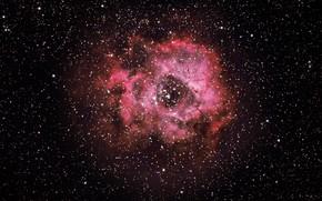 Picture space, nebula, stars, rosetta nebula
