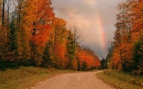 Picture road, autumn, rainbow