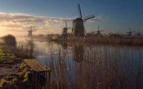 Picture grass, landscape, nature, fog, river, morning, mill, Netherlands, Bank, Holland, mostok