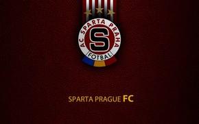 Picture wallpaper, sport, logo, football, Sparta Prague