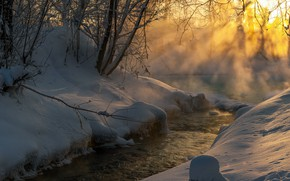 Picture winter, rays, light, snow, trees, landscape, nature, stream