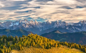 Picture forest, the sky, clouds, trees, mountains, Switzerland, Alps, Switzerland, trees, mountains, Alps