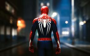 Picture Marvel Comics, superhero, Spider-Man, video games, HD wallpaper, rear view