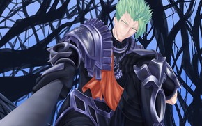 Picture branches, guy, Lancer, Fate - Apocrypha, Fate Apocrypha