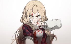 Picture blood, the game, art, girl, bit, Sinoalice, Akazukin
