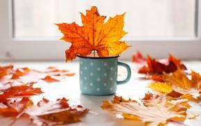 Picture autumn, leaves, background, colorful, mug, maple, yellow, wood, autumn, leaves, mug, maple