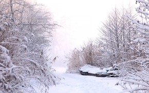 Picture winter, frost, the sky, snow, branches, nature, fog, boat, the snow, haze, path, the bushes, …