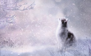 Picture winter, cat, cat, look, snow, pose, rendering, the snow, sitting, snowfall, looking up, photoart