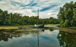 Picture trees, reflection, shore, boat, pond