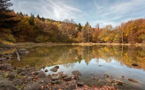 Picture autumn, forest, trees, landscape, nature, lake, reflection, stones, Bulgaria, Alexander Sandev
