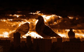 Picture Figure, The city, Dove, Pigeons, Art, Art, Boris Groh, by Boris Groh, Ururu