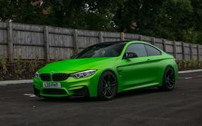 Wallpaper BMW, Green, matte, wrap, Wasabi